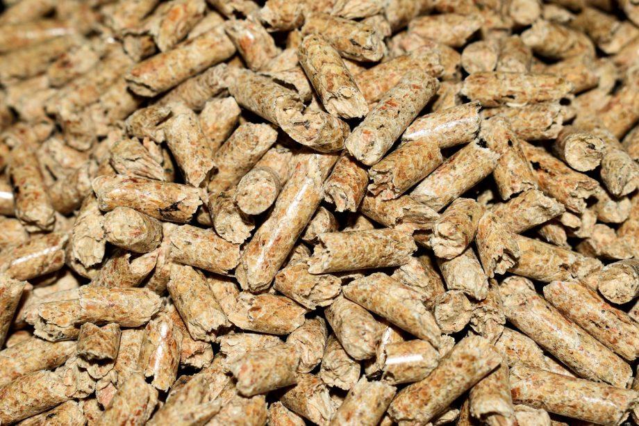Plants for plants. Lego börjar tillverka Legobitar av pellets innehållande socker istället för olja.
